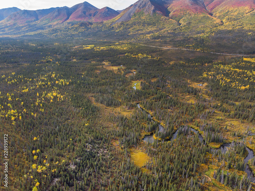 ツンドラ地帯 アラスカ Tundra of the high latitudes of Alaska