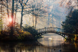 Scenic view of misty autumn landscape with beautiful old bridge with swan on pond in the garden with red maple foliage. - 228940719