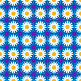 Seamless pattern background with cornflowers and chamomiles, colorful illustration