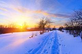 Beautiful winter sunset - 228988931