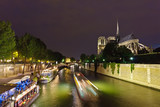 Notre Dame de Paris at night, Paris, France - 228989747
