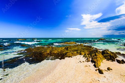 sea shore rocky