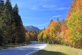Straße in Herbstlandschaft