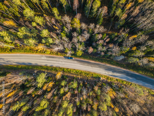 Aerial view of the forests of...