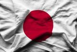Japan - 229069778