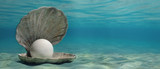 Pearl in an oyster shell underwater, on the sea bottom. 3d illustration - 229110737