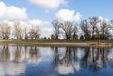 Tree row, sky and clouds are reflected in the calm river - 229130157