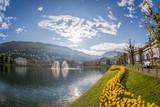 Springtime in Bergen, Norway - 229146999