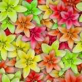 Colorful background with Lily flower. Seamless pattern