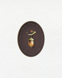 Illustration with oak acorns  painted  with colored pencils. Autumn element for creating prints on clothes, textiles, for invitation or poster design. - 229181724
