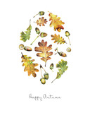 Illustration with leaves of oak and acorns  painted  with colored pencils. Autumn element for creating prints on clothes, textiles, for invitation or poster design.  - 229182173