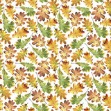 Seamless pattern with autumn yellow  leaves of oak. Hand drawn illustration with colored pencils. Botanical natural design for textiles, interior or some background. - 229182325