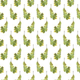 Seamless pattern with autumn green leaves of oak. Hand drawn illustration with colored pencils. Botanical natural design for textiles, interior or some background. - 229182363
