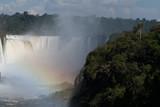 Iguazu falls and Atlantic rainforest in sunlight, Misiones, Argentina, South America