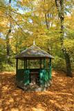 gadzebo in autumn park - 229194350
