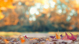 bunter Herbsthintergrund - Allee