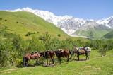 Glacier Shkhara and the Inguri River Valley, Svaneti