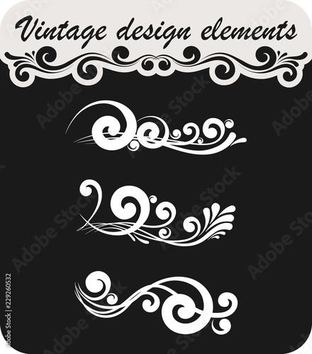 Vintage decorative design elements - 229260532