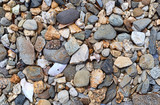 Close view of a broken seashells plus colorful rocks and pebbles. - 229283948