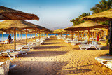 beach in the egypt - 229309197