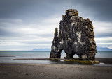 Dinosaur sculpture on Icelandic beach