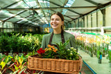 Image of brunette woman gardener 20s wearing apron carrying basket with plants, while working in greenhouse