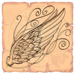 Vector illustration of wing on the background of old paper. Design element for emblem, sign, vintage style posters and more.