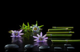 Beautiful spa composition with passiflora, bamboo and stones on black background