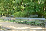 Green benches in park in Warsaw, Poland - 229407178
