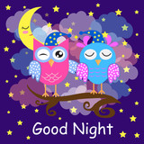 Good night card with a sleeping owls, moon and a clouds. Vector illustration.