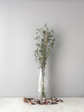 Bouquet of dried and wilted green Gypsophila flowers in glass bottle on matt marble floor and gray background