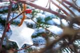 Ein Stern aus Eis zwischen Zweigen im Garten