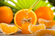 Leinwanddruck Bild - Orange Essential Oil on green leaves background