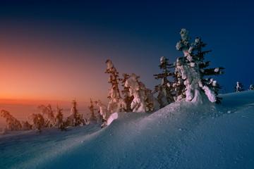 Sunrise on Babia mountain. Winter landscape