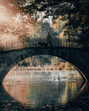 Autumn in a city garden -  hanover