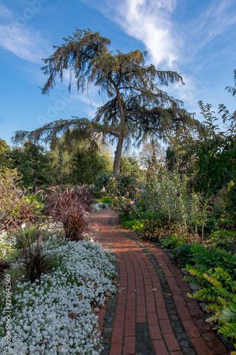 Leinwanddruck Bild Gartenweg