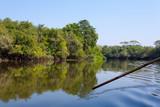 Panorama from Pantanal, Brazilian wetland region.
