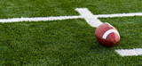 A brown leather american football on a green playing field