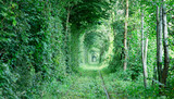 Tunnel of love - 229688771