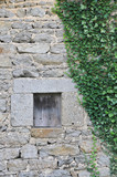 Small Stone Window with closed shutter inside an irregular stones wall with green ivy leafs