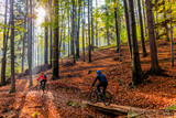 Cycling, mountain biker couple on cycle trail in autumn forest. Mountain biking in autumn landscape forest. Man and woman cycling MTB flow uphill trail. - 229703185