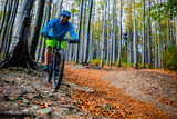Mountain biker cycling in autumn mountains forest landscape. Man cycling MTB flow trail track. Outdoor sport activity. - 229703938