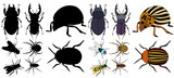 vector, isolated, insects, beetles, silhouette set