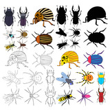 vector, isolated, insects, beetles, set of sketch and silhouette