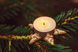 Old fashioned picture of tea candle glowing on star shaped ornamental holder placed on green spruce tree, dark blurry background, copy space - 229751750