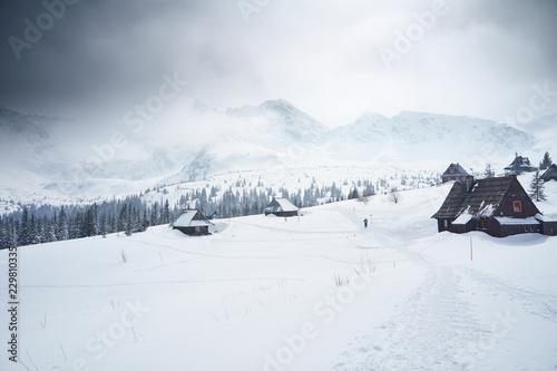 Tatry zimą, Hala Gąsienicowa
