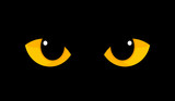 Yellow cat eyes in darkness
