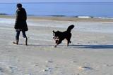 Frau mit Hund Sylt - 229830528
