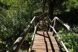 wooden bridge over wild river