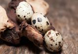 œufs de caille